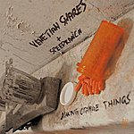 Venetian Snares Making Orange Things