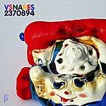 Venetian Snares Vsnares 2370894