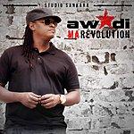 Didier Awadi Ma Révolution