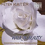 Peter Kater Walk In Beauty