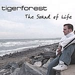 Tiger Forest The Sound Of Life