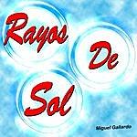 Miguel Gallardo Rayos De Sol