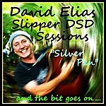 David Elias Silver Pen