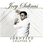 Joey Salinas Identity: Chapter II