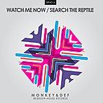 Monkey Watch Me Now