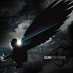 Eligh Grey Crow
