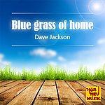 Dave Jackson Blue Grass Of Home