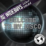 Micky Slim Welcome To My Disco