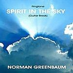 Norman Greenbaum Spirit In The Sky - Guitar Break