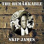 Skip James The Remarkable Skip James