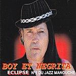 Boy Eclipse (N°1 Du Jazz Manouche)