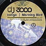DJ 3000 Indigo