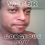 Viper Gorgeous Boy