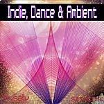 David Hughes Indie, Dance & Ambient