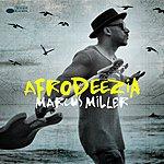 Cover Art: Afrodeezia