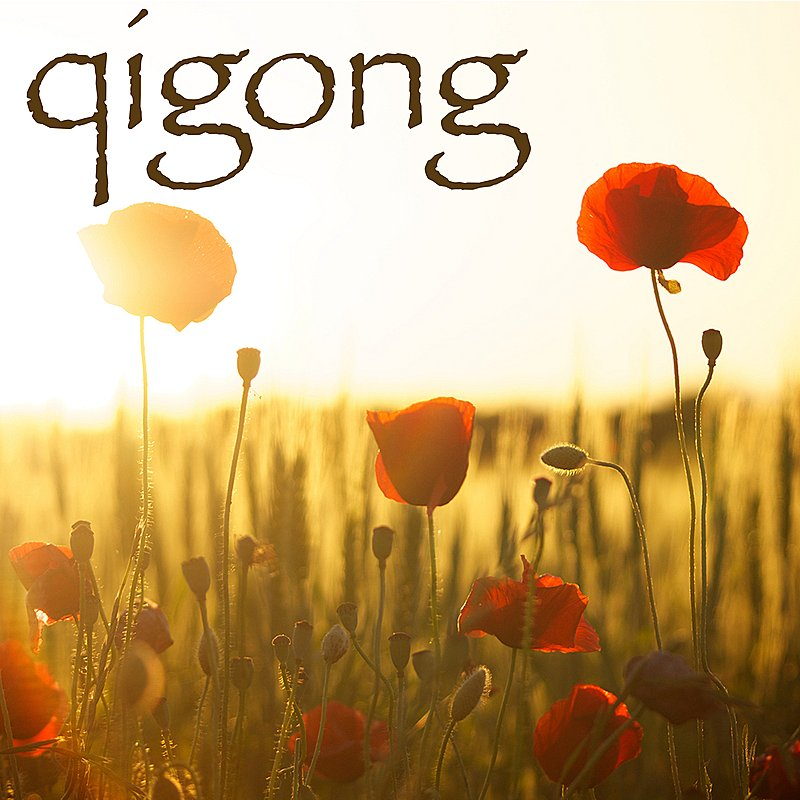 Cover Art: Qigong - Chi Gong Oriental Music With Relaxing Nature Sounds