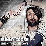 Cover Art: I Didn't Fall In Love