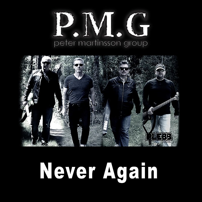 Cover Art: Never Again (Radio Edit)