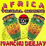 Africa Tribal House