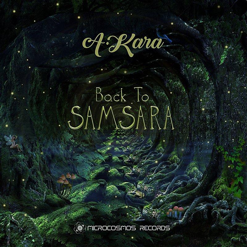 Cover Art: Back To Samsara
