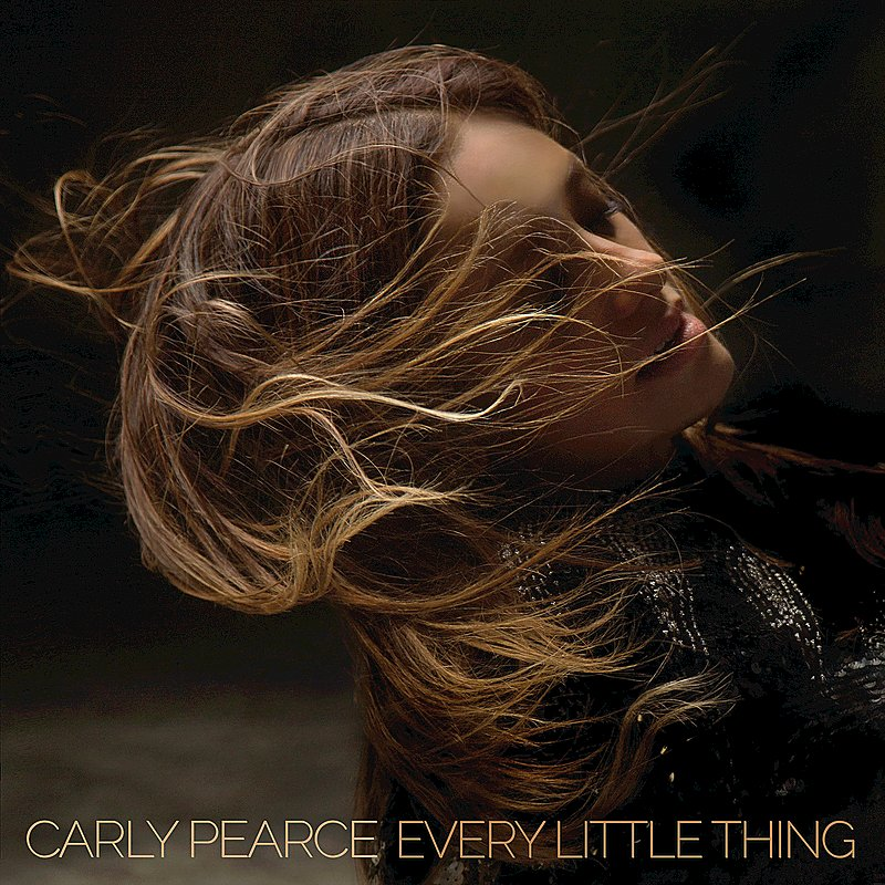 Cover Art: Every Little Thing