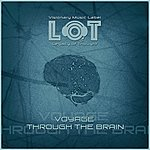 Cover Art: Voyage Through The Brain