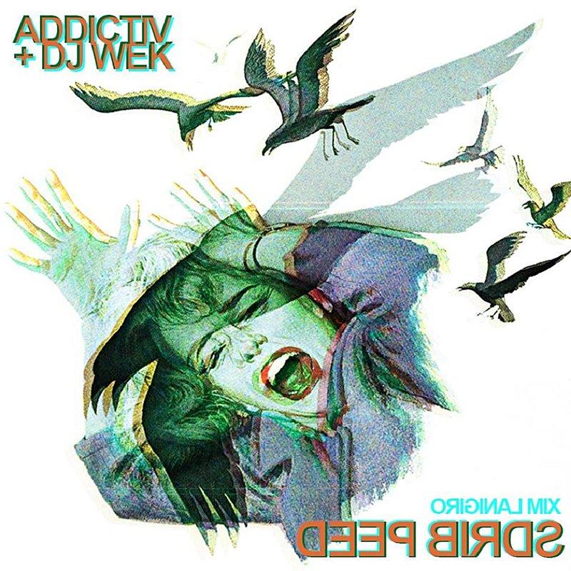 Cover Art: Deep Birds (Feat. Dj Wek)