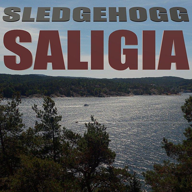 Cover Art: Saligia