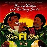 Cover Art: Dub Fi Dub