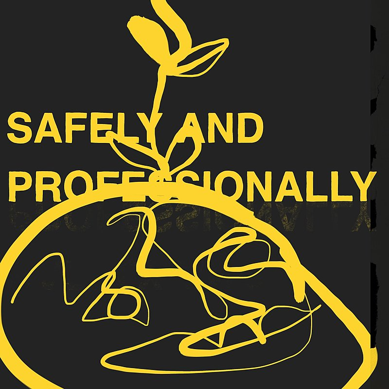 Cover Art: Safely And Professionally