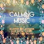 Cover Art: Calming Music: Relaxation, Yoga, Meditation, Sleep, Bedtime, Serenity, Chill, Zen, Focus, Ballads