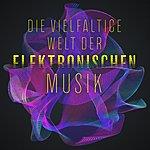 Cover Art: Die Vielf-ltige Welt Der Elektronischen Musik
