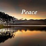 Cover Art: Peace