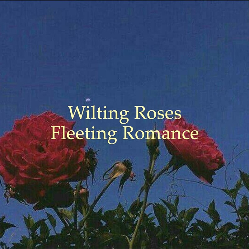 Cover Art: Wilting Roses, Fleeting Romance