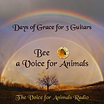 Cover Art: Days Of Grace For 3 Guitars