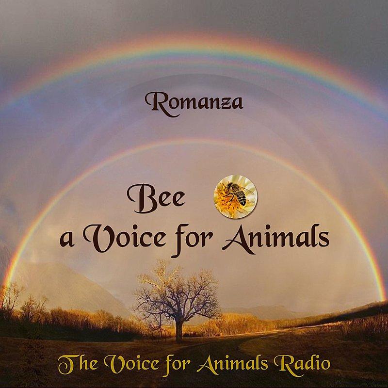 Cover Art: Romanza