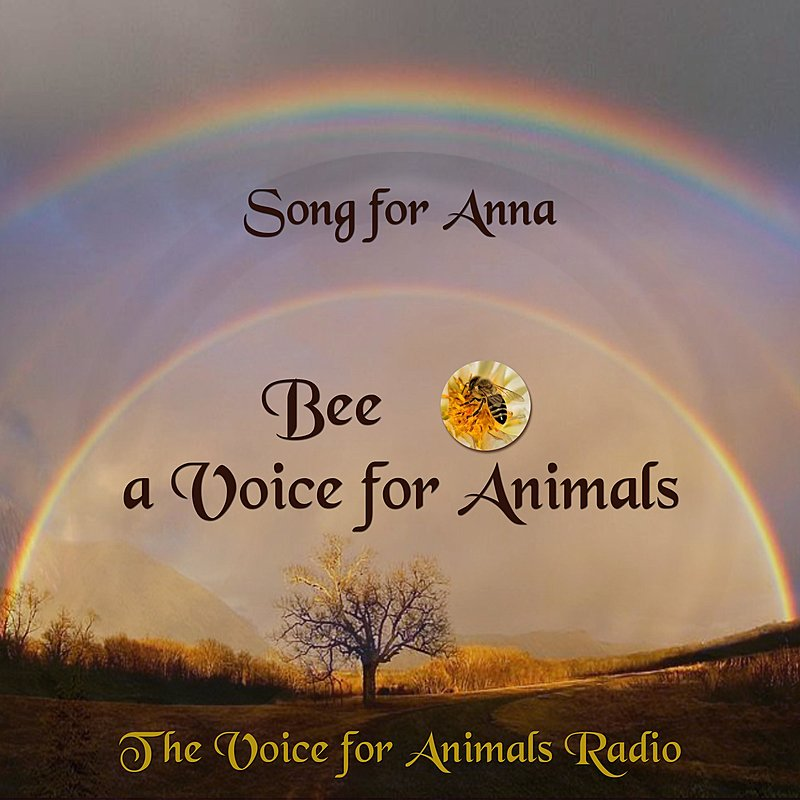 Cover Art: Song For Anna