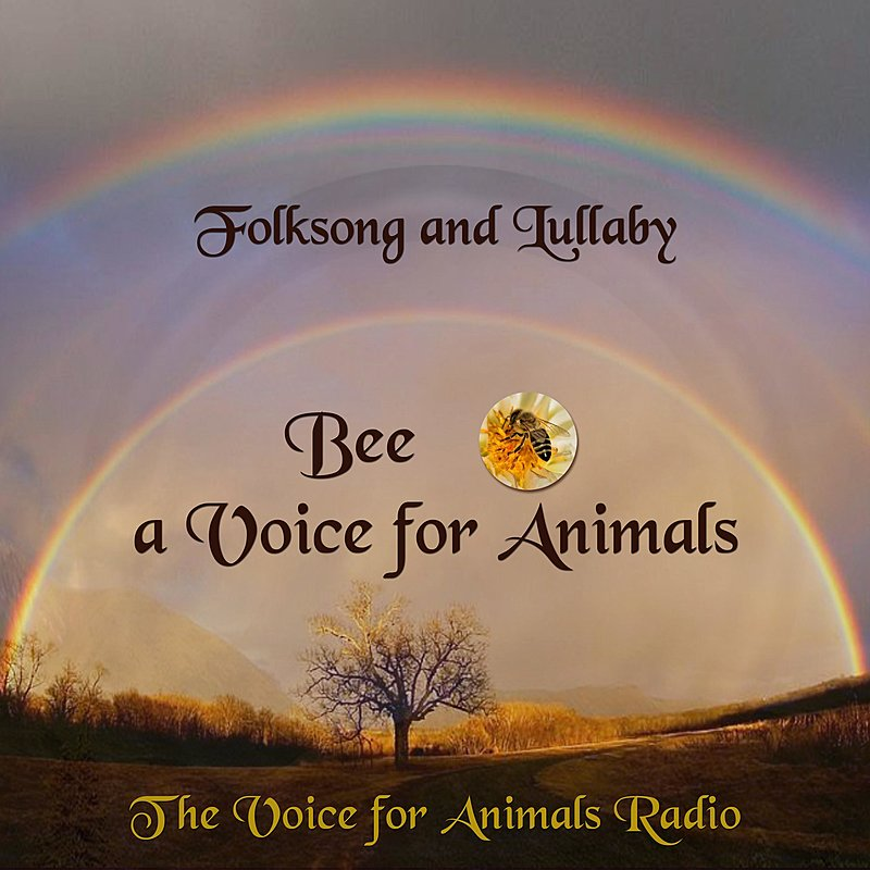 Cover Art: Folksong And Lullaby